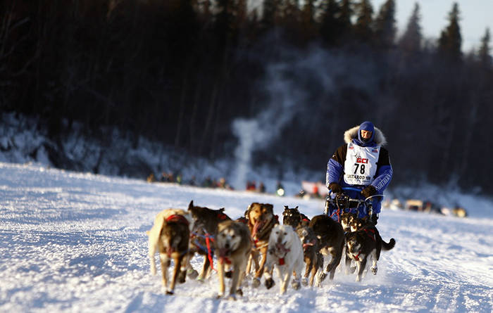 Top 3 can't-miss Iditarod events